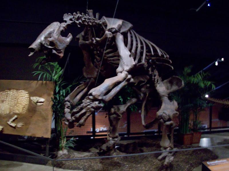 Houston Museum of Natural Science, Sugar Land - 114_6691.JPG