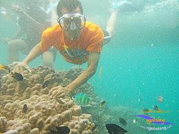 pulau harapan timur jauh 29-30 nov 2014 caklung 24