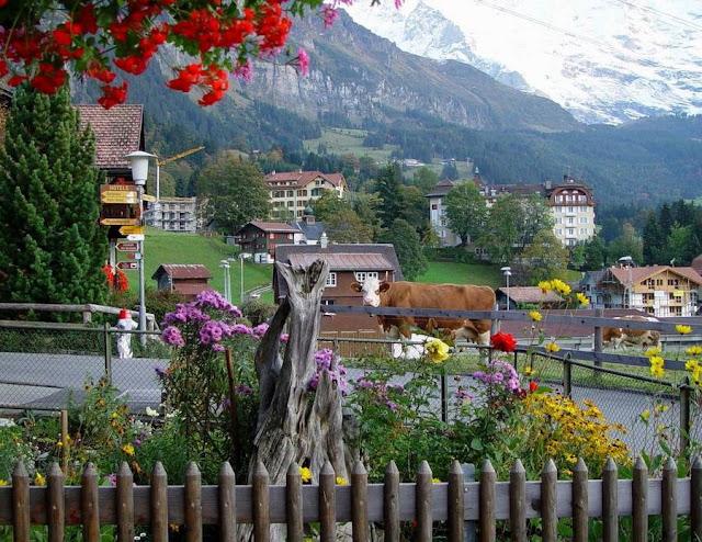 Деревня Венген в Швейцарии 10