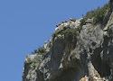 13 gierenrots foz de lumbier.jpg