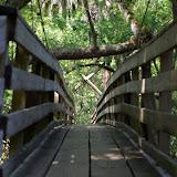 04-04-12 Hillsborough River State Park - IMGP4421.JPG