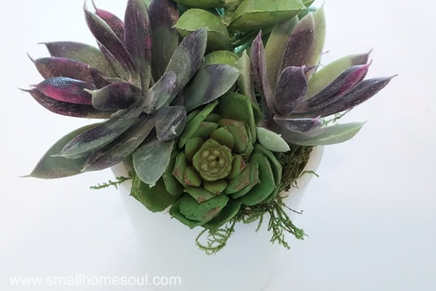 Milk-Glass-Succulent-Planter-Close