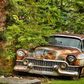 Rusted Cadillac by Andrew Savasuk - Transportation Automobiles