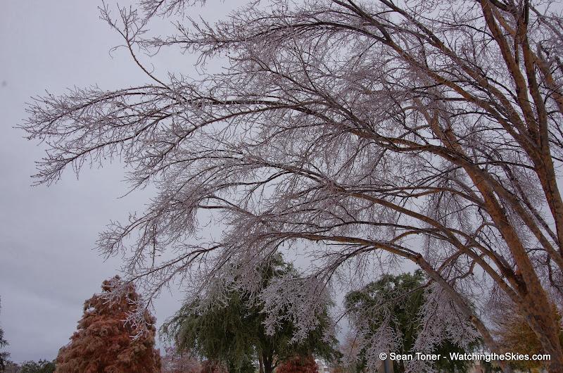 12-06-13 DFW Ice Storm - IMGP0445.JPG