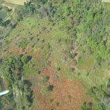 Aerial Shots Of Anderson Creek Hunting Preserve - tnIMG_0380.jpg