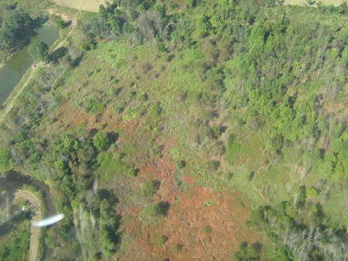 Aerial Shots Of Anderson Creek Hunting Preserve - tnIMG_0380.jpg