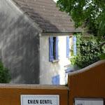 """Avenue du Général Leclerc : panneau """"Chien gentil, maître lunatique"""""""