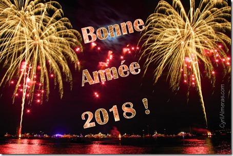 Bonne année 2018 3