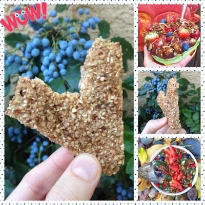 Oatless Oatmeal Crunchy Clusters (Gluten Free, Vegan, Oat Free)