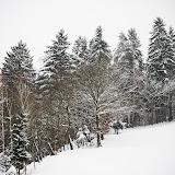 Škofja Loka under the snow - Vika-9032.jpg