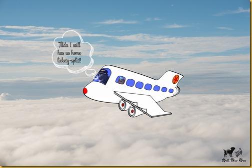 Matt & Matilda on a plane with word bubble (©Bell Fur Zoo)