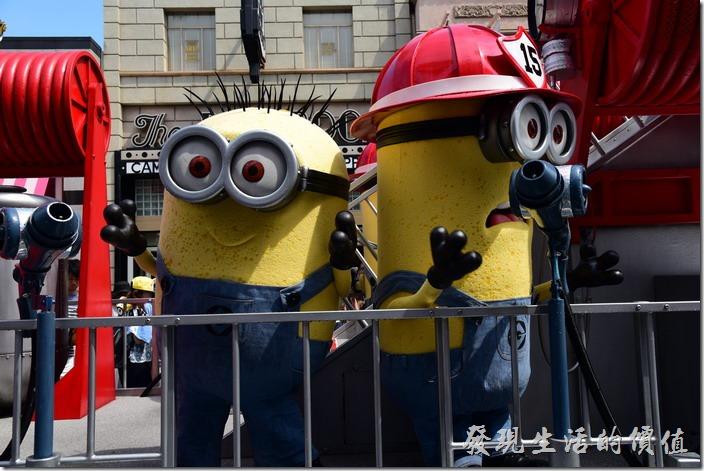 日本大阪-環球影城。小小兵充當消防員站在花車上面,大熱天穿著布偶應該很熱啊!