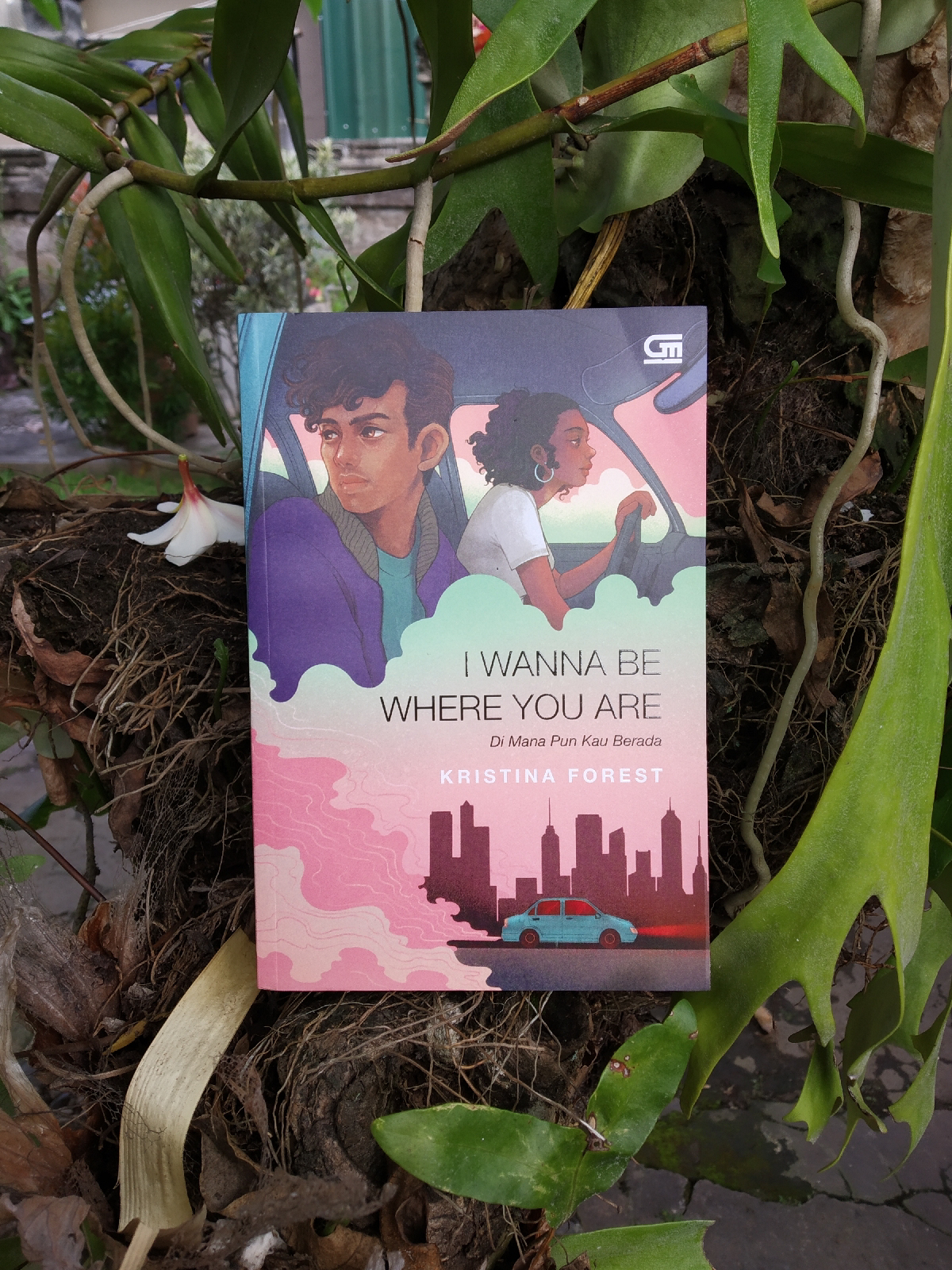 Review Novel I Wanna Be Where You Are