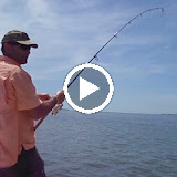 Jim's stalked tailing tarpon.avi