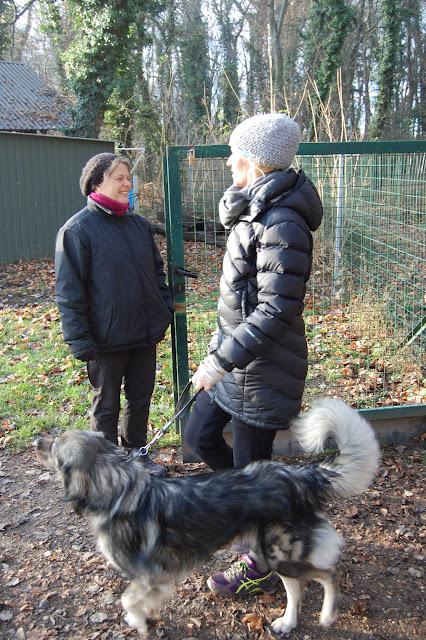 OG Prüfung Winter 2015 - DSC_0352.JPG