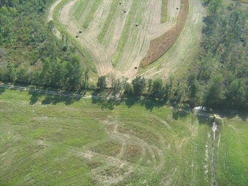 Aerial Shots Of Anderson Creek Hunting Preserve - tnIMG_0388.jpg