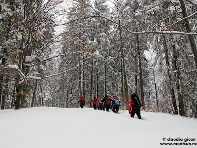 ture de iarna in Baiului