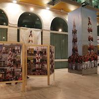Exposició 15 anys Biblioteca Pública 17-01-11 - 20110117_528_Lleida_Exposicio_15_anys_CdL.jpg