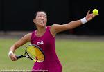 Vania King - Topshelf Open 2014 - DSC_7006.jpg