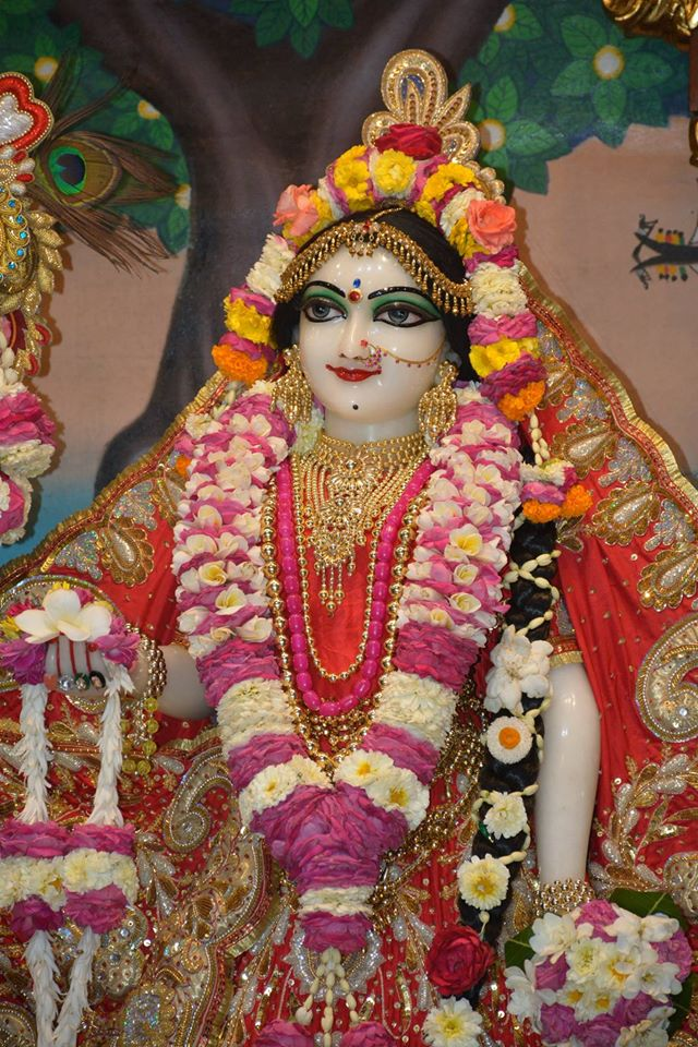 ISKCON Ujjain Deity Darshan 04 April 2016  (22)