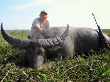 water-buffalo-hunting-safaris-6.jpg