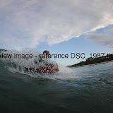 DSC_1987.thumb.jpg