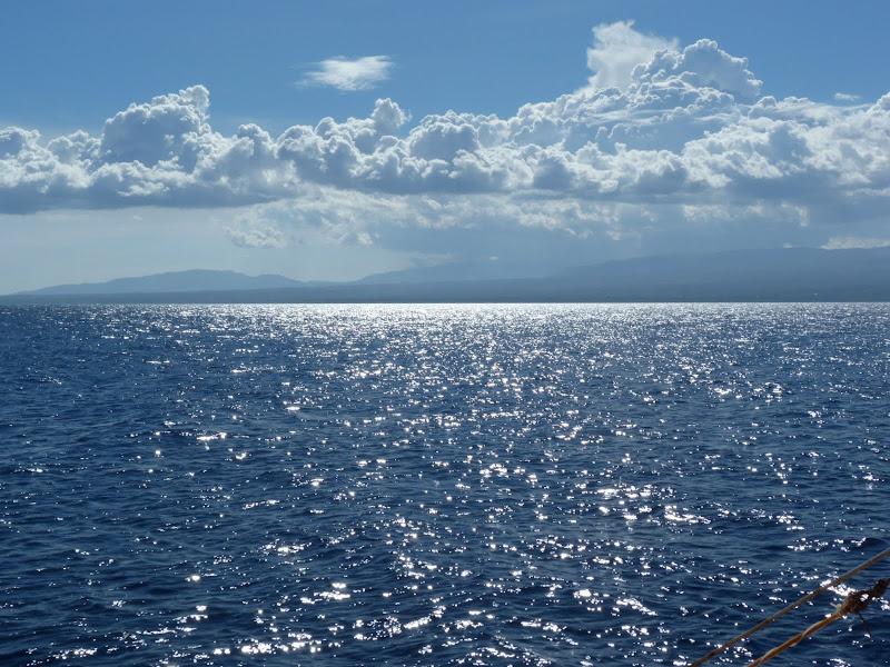 Dauin, Dumaguete, APO Island (Negros) - philippines%2Bdeux%2B776.JPG
