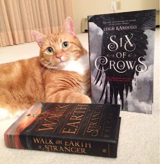 Ripple with Walk on Earth a Stranger and Six of Crows