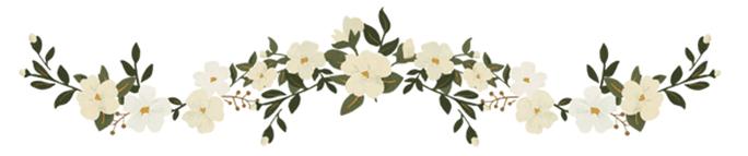 flower-line