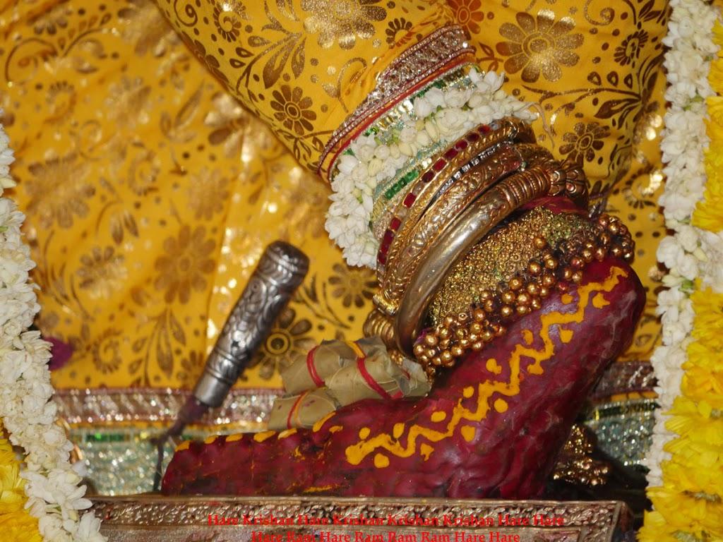 Radha Govind Devji Deity Darshan 2 April  2016  (4)