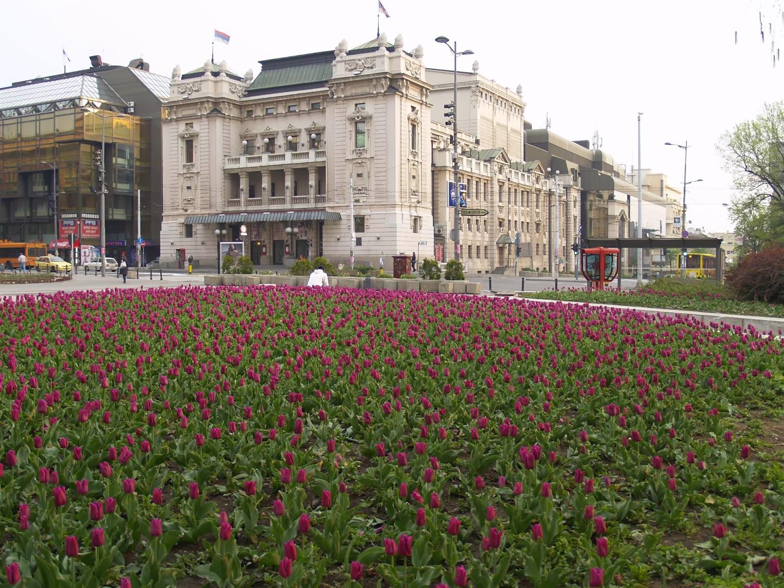 Motivacijski vikend, Beograd 2010 - _0106131.JPG