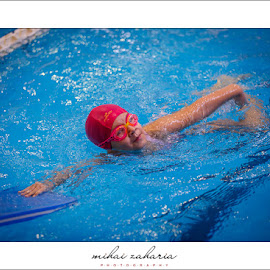 20161217-Little-Swimmers-IV-concurs-0096