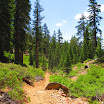 cannell_trail_IMG_1805.jpg