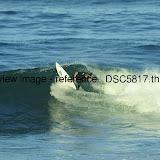 _DSC5817.thumb.jpg