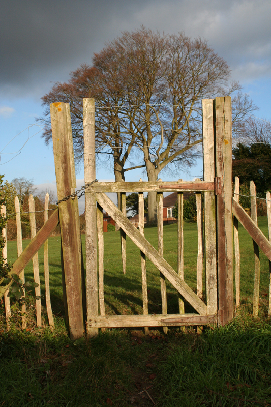 12 gate woods approaching walton downs
