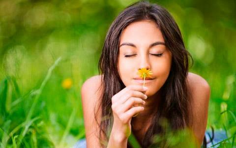 Curiosidades del olfato