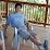 Dan Liu's profile photo