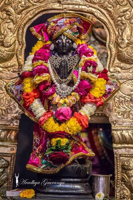 ISKCON Mayapur Deity Darshan 01 Mar 2016 (10)