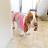 Lizeth Valencia avatar image