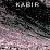 kabir awatramani's profile photo