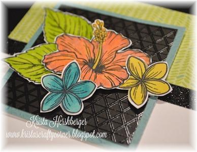 2016-7 blog hop - hawaiian hibiscus - calypso - CU DSC_1897