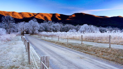 Winter Morning, Sparks Lane, Cades Cove, Great Smoky Mountains National Park, Tennessee.jpg