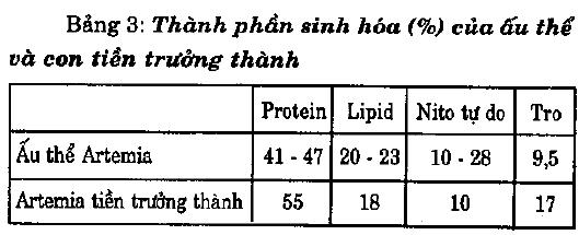 Kỹ thuật nuôi Artemia - 56ea6221b64dc