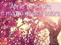 aprile-fa-il-fiore-e-maggio-gli-da-il-colore immagine con frase aforismo.jpg