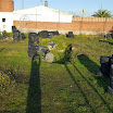 Paintball-Talavera (10).jpg