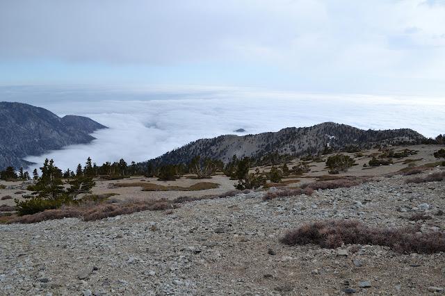 cloud field