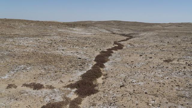 """Περιβαλλοντικό """"SOS"""" για το Ιράκ: Πώς Τουρκία - Ιράν συνέβαλαν στην κρίση νερού"""