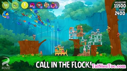 Giới thiệu Game Angry Birds Rio