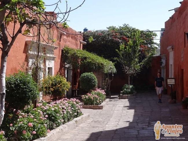 Visita-Arequipa-Per-102