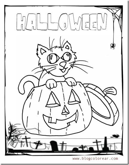 gato   halloween de